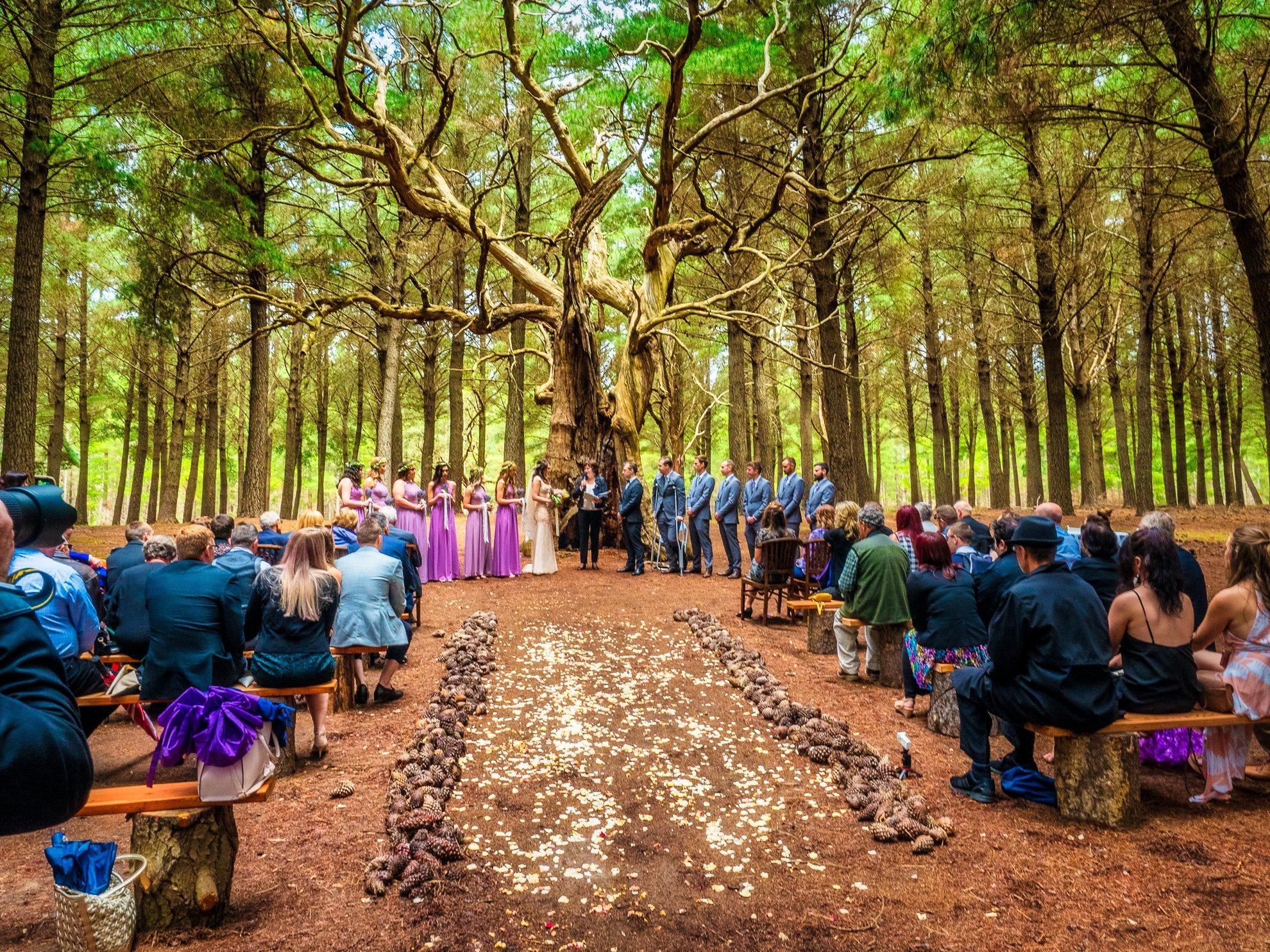 Kuitpo Forest Ceremony