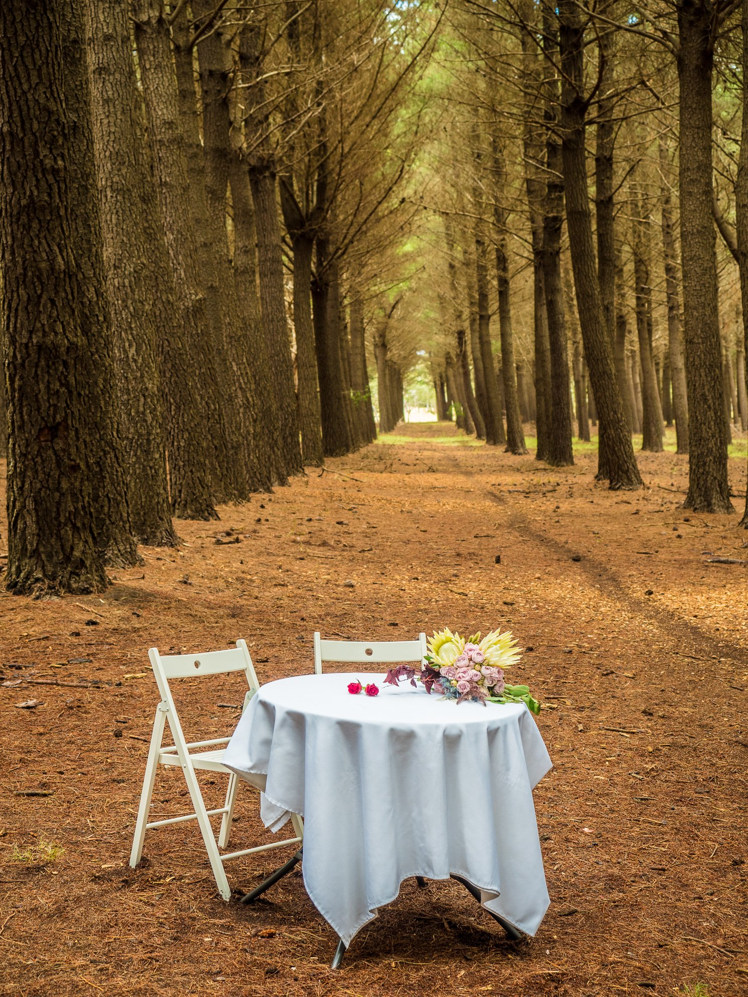 Kuitpo Forest with Table Setting