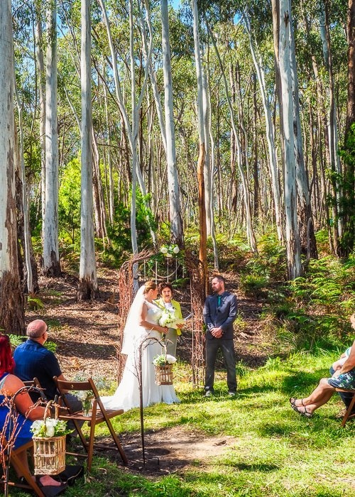 Ceremony in Gum Forest